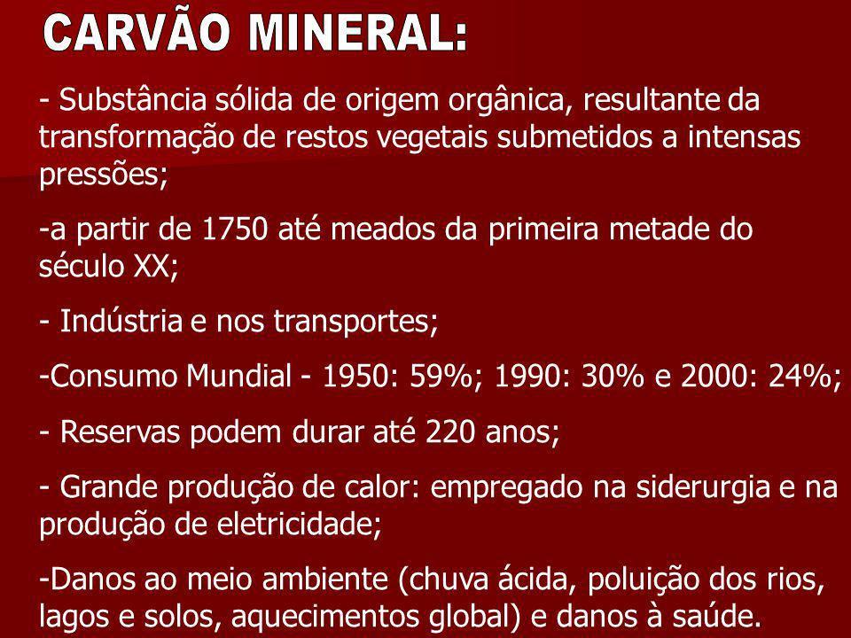 CARVÃO MINERAL: - Substância sólida de origem orgânica, resultante da transformação de restos vegetais submetidos a intensas pressões;