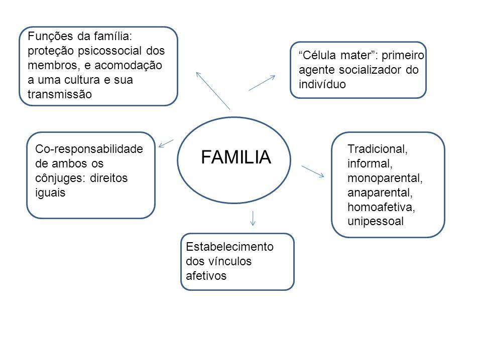 Funções da família: proteção psicossocial dos membros, e acomodação a uma cultura e sua transmissão