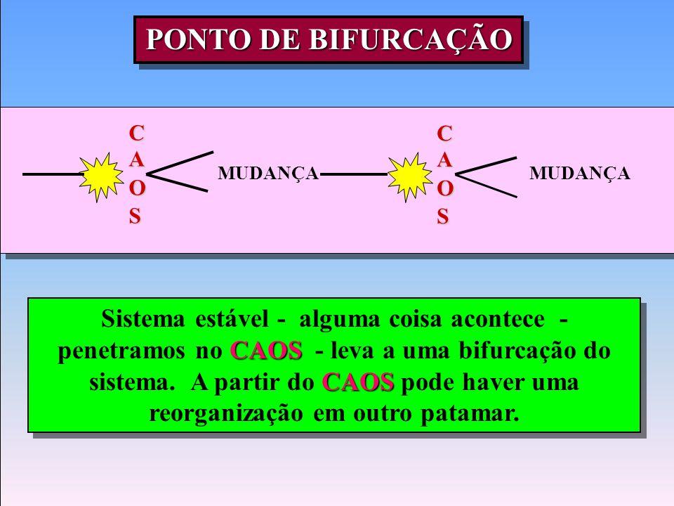 PONTO DE BIFURCAÇÃO C. A. O. S. C. A. O. S. MUDANÇA. MUDANÇA.