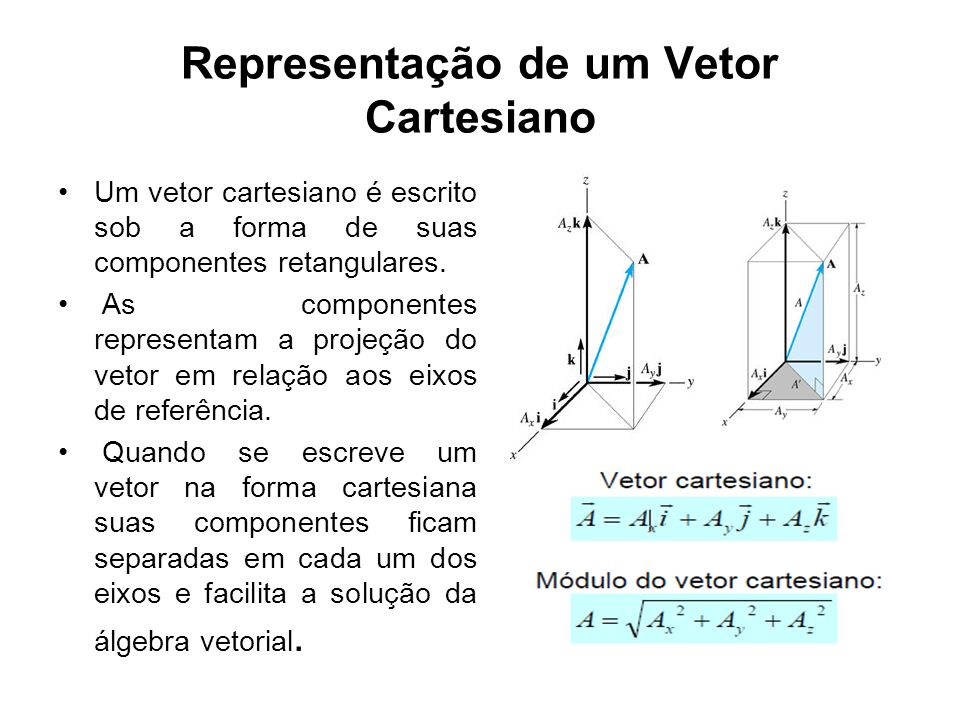 Representação de um Vetor Cartesiano