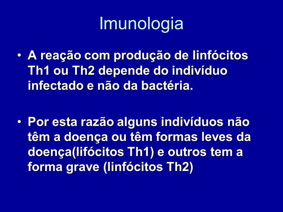 Imunologia A reação com produção de linfócitos Th1 ou Th2 depende do indivíduo infectado e não da bactéria.