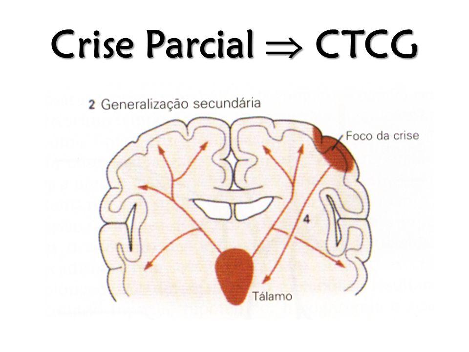 Crise Parcial  CTCG