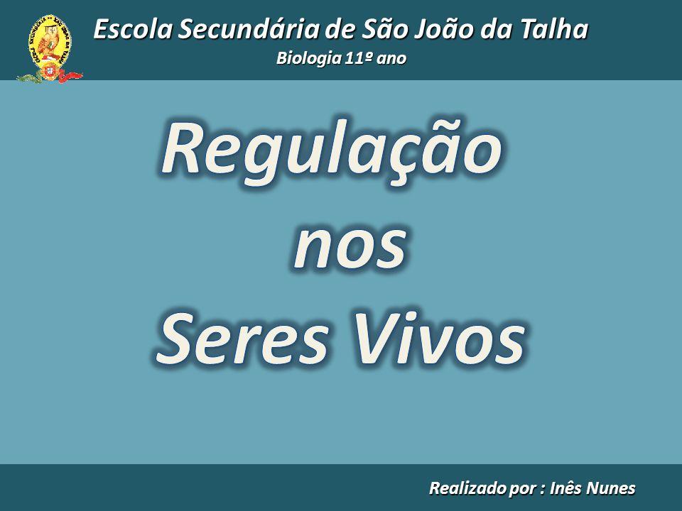 Escola Secundária de São João da Talha