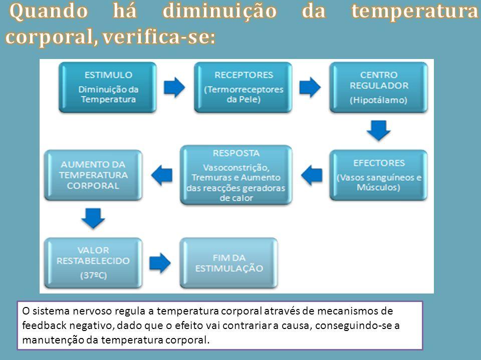 Quando há diminuição da temperatura corporal, verifica-se: