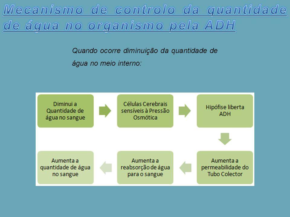 Mecanismo de controlo da quantidade de água no organismo pela ADH