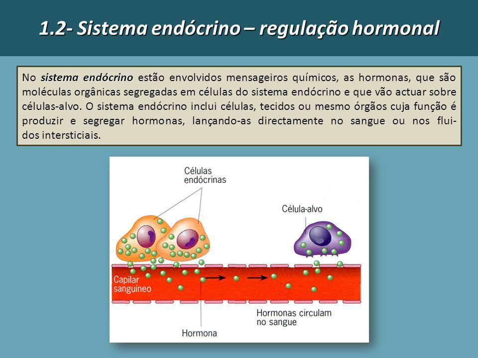 1.2- Sistema endócrino – regulação hormonal