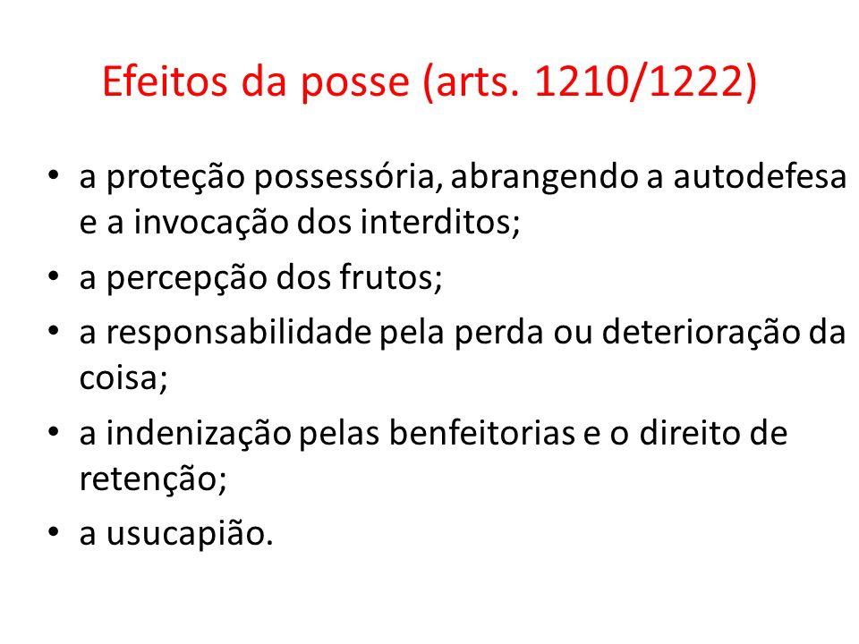 Efeitos da posse (arts. 1210/1222)