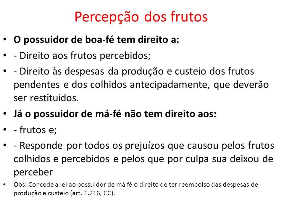 Percepção dos frutos O possuidor de boa-fé tem direito a: