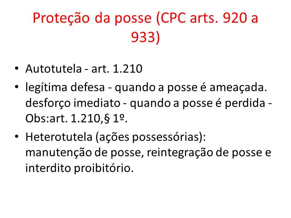 Proteção da posse (CPC arts. 920 a 933)