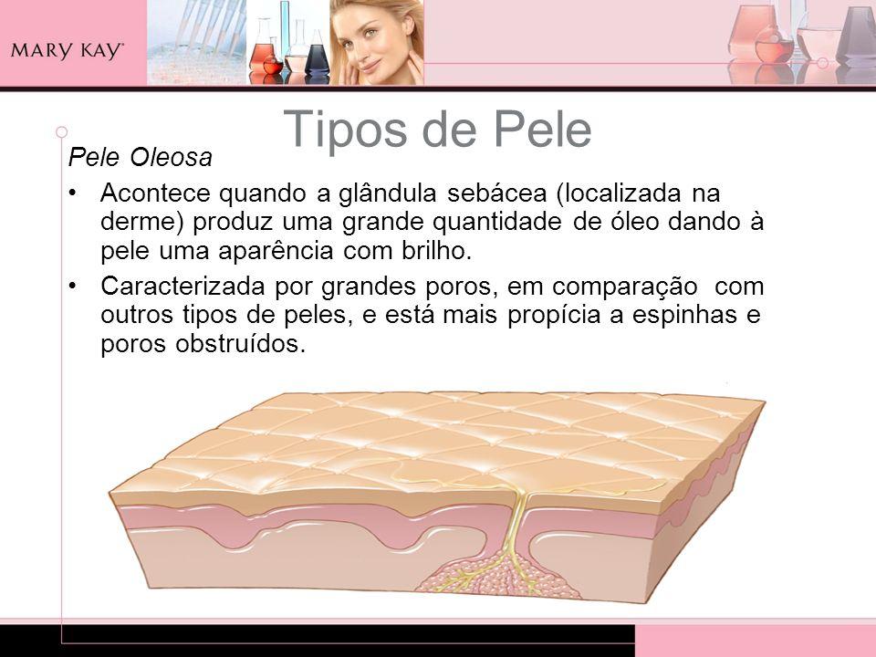 Tipos de Pele Pele Oleosa