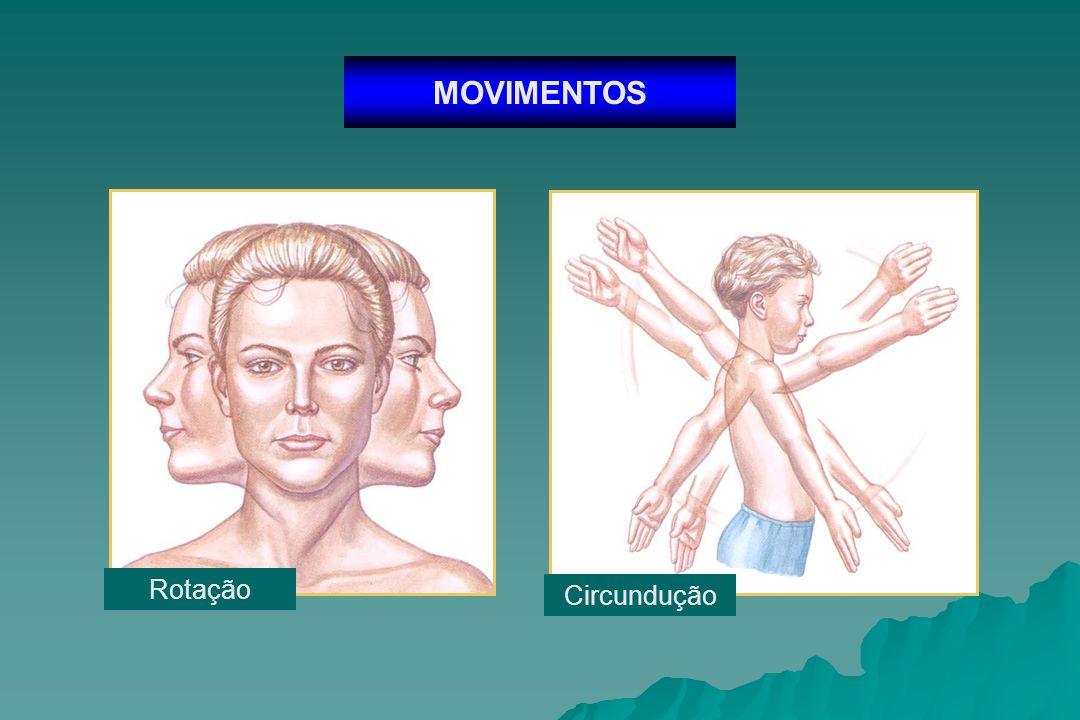 MOVIMENTOS Rotação Circundução