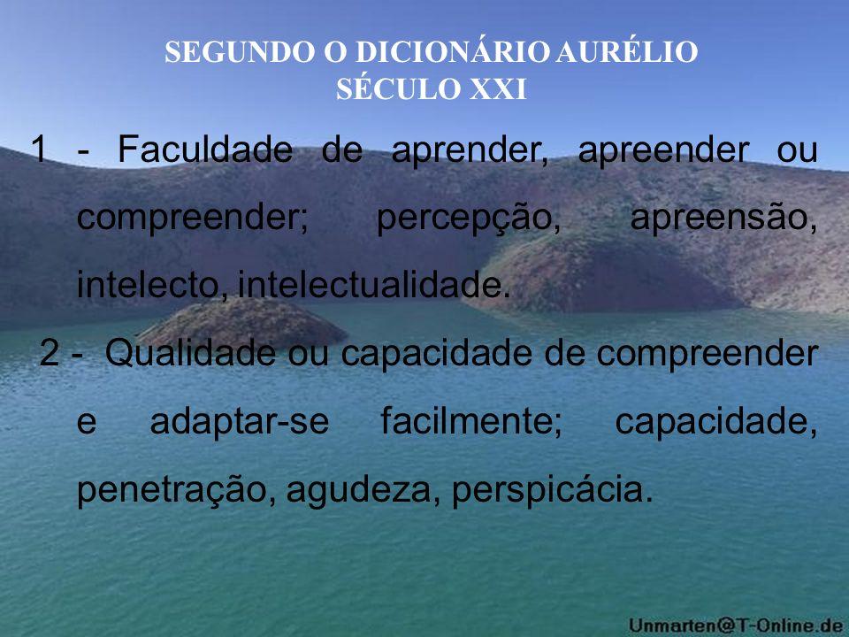 SEGUNDO O DICIONÁRIO AURÉLIO SÉCULO XXI