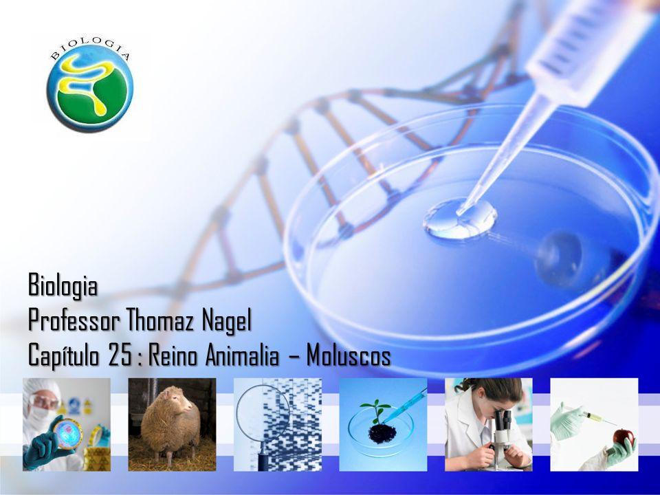 Biologia Professor Thomaz Nagel Capítulo 25 : Reino Animalia – Moluscos