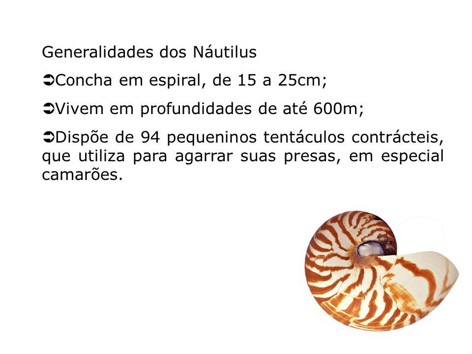 Generalidades dos Náutilus