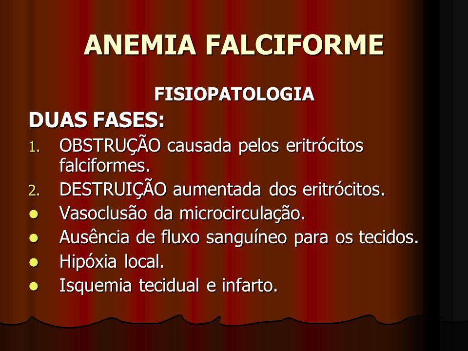 ANEMIA FALCIFORME DUAS FASES: FISIOPATOLOGIA