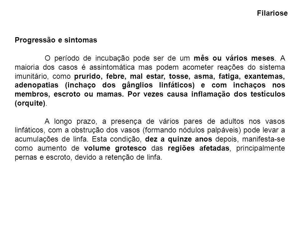 FilarioseProgressão e sintomas.