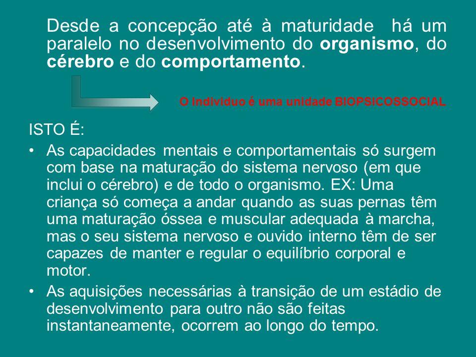 Desde a concepção até à maturidade há um paralelo no desenvolvimento do organismo, do cérebro e do comportamento.