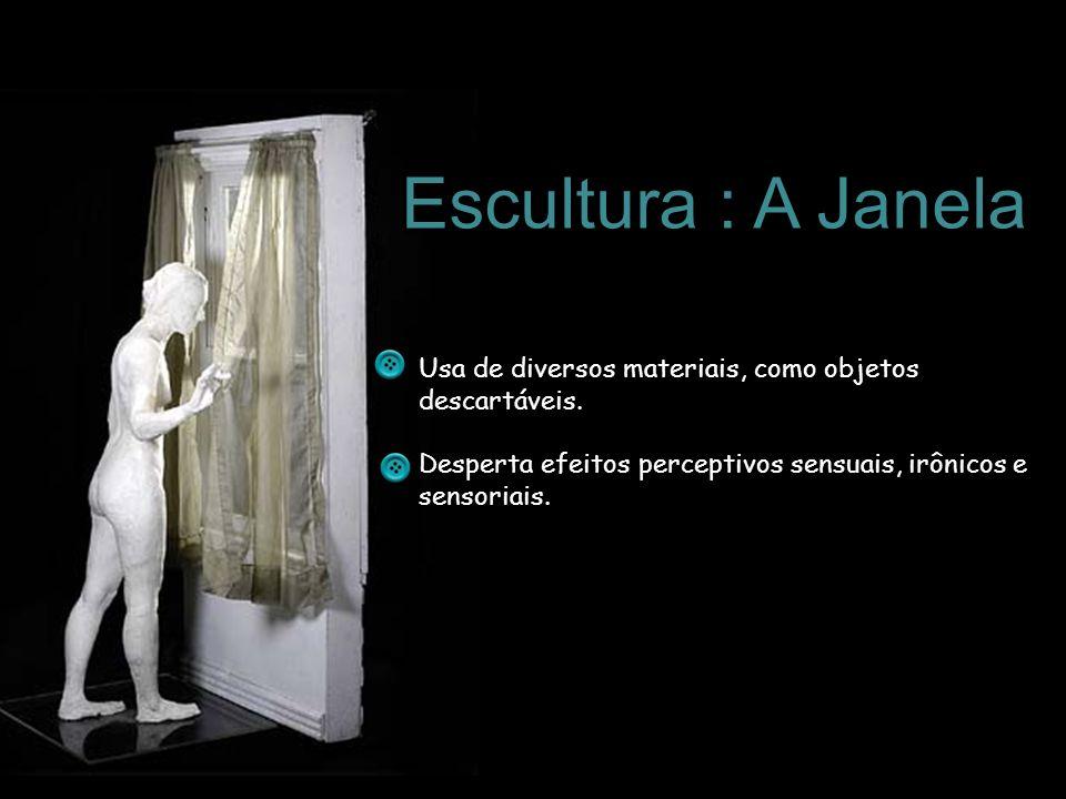 Escultura : A Janela Usa de diversos materiais, como objetos descartáveis.