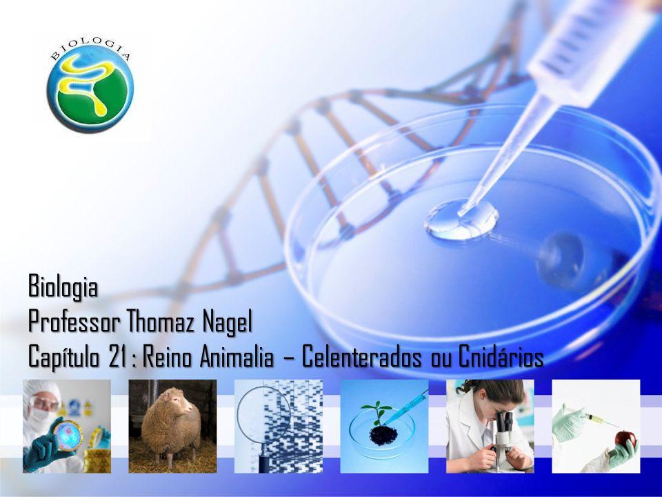 Biologia Professor Thomaz Nagel Capítulo 21 : Reino Animalia – Celenterados ou Cnidários