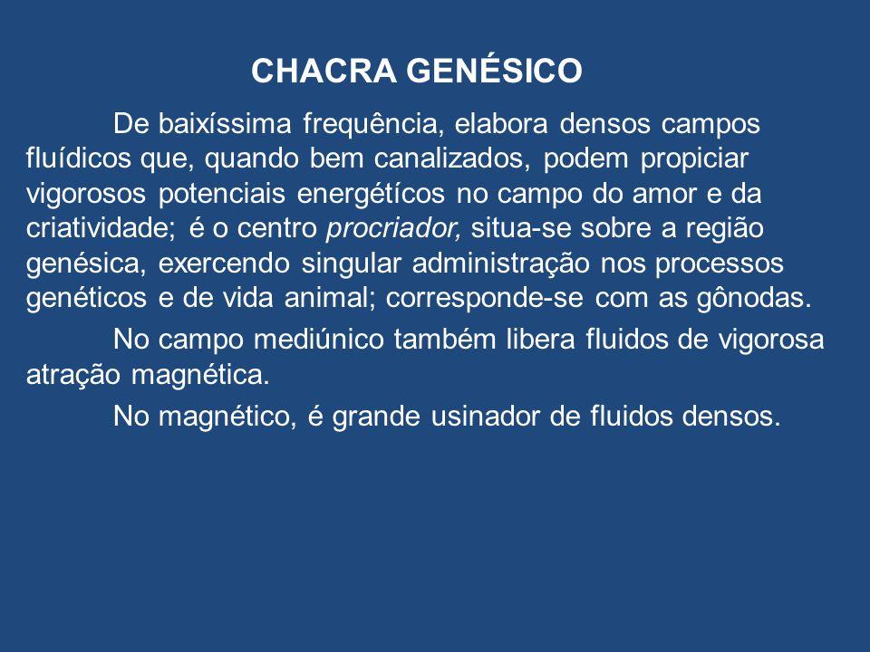 CHACRA GENÉSICO