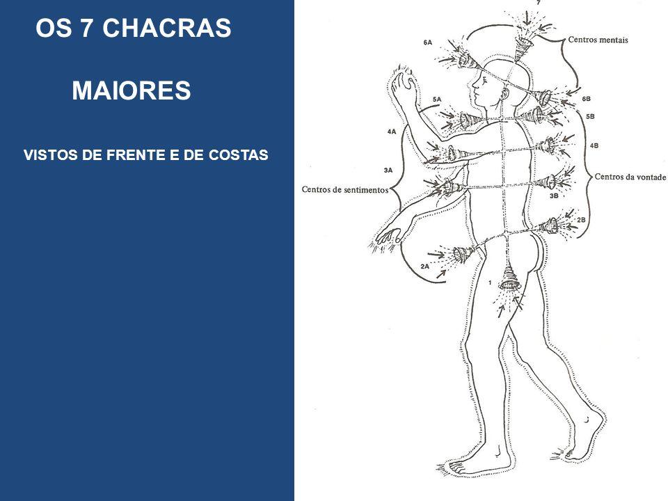 OS 7 CHACRAS MAIORES VISTOS DE FRENTE E DE COSTAS