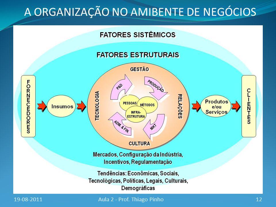 A ORGANIZAÇÃO NO AMIBENTE DE NEGÓCIOS