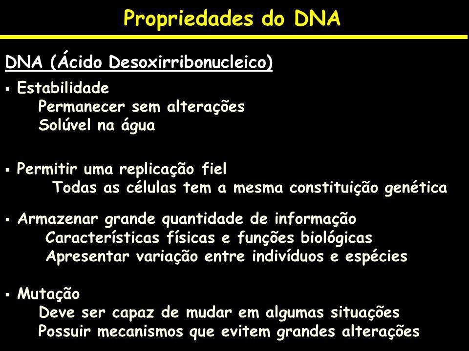Propriedades do DNA DNA (Ácido Desoxirribonucleico) Estabilidade