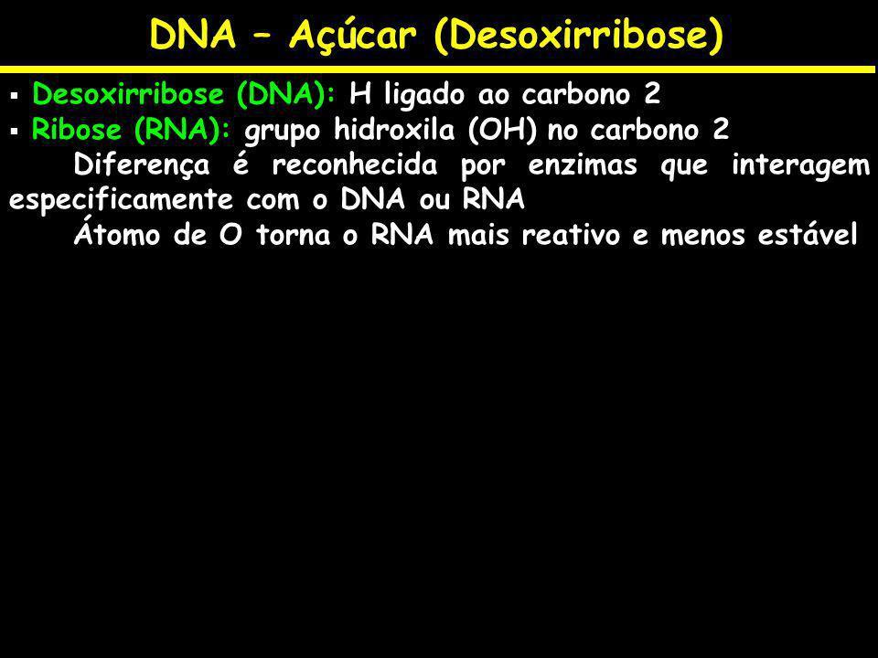 DNA – Açúcar (Desoxirribose)