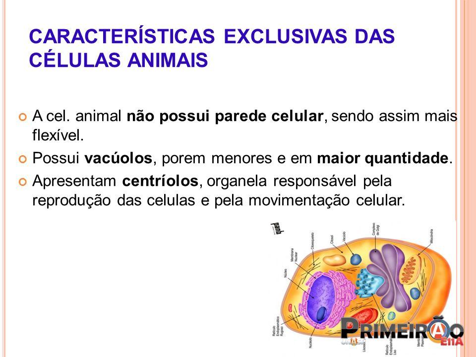 CARACTERÍSTICAS EXCLUSIVAS DAS CÉLULAS ANIMAIS
