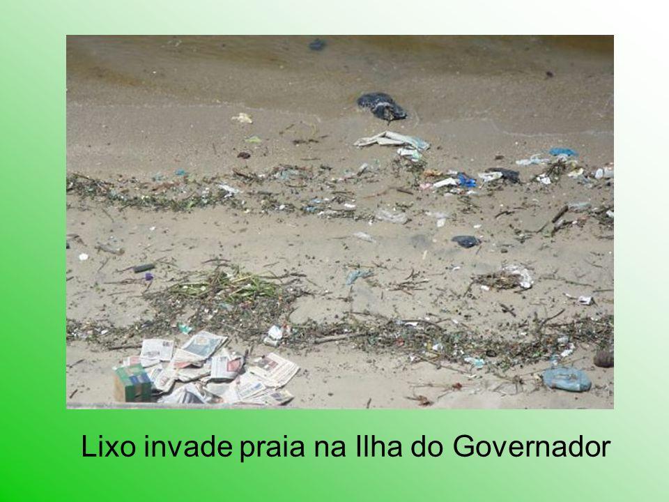 Lixo invade praia na Ilha do Governador