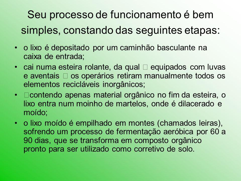Seu processo de funcionamento é bem simples, constando das seguintes etapas: