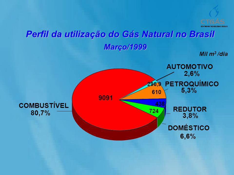 Perfil da utilização do Gás Natural no Brasil