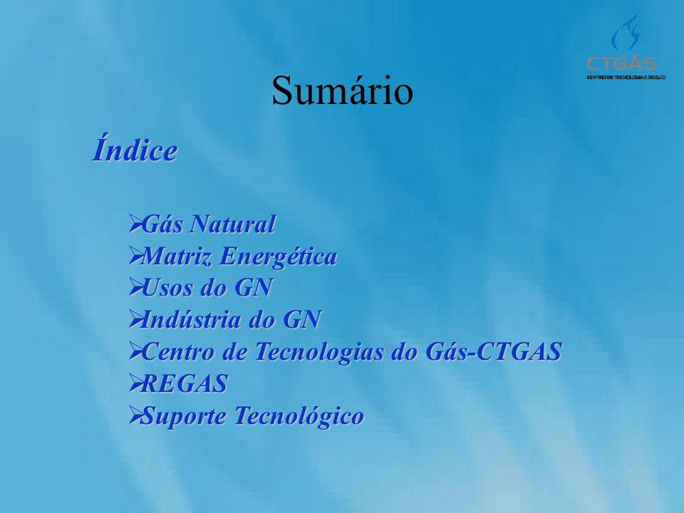Sumário Índice Gás Natural Matriz Energética Usos do GN
