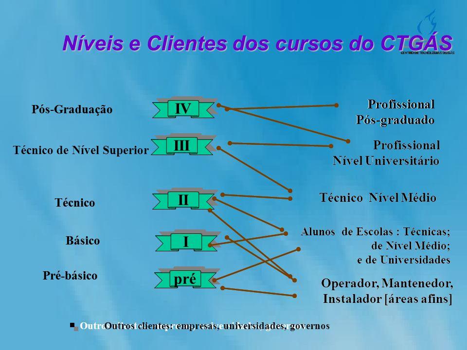 Níveis e Clientes dos cursos do CTGÁS