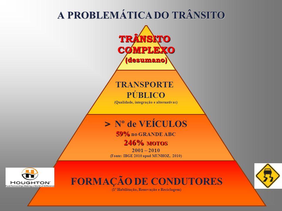 A PROBLEMÁTICA DO TRÂNSITO