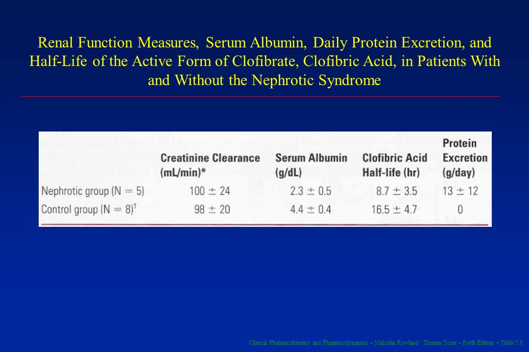 Renal Function Measures, Serum Albumin, Daily Protein Excretion, and Half-Life of the Active Form of Clofibrate, Clofibric Acid, in Patients With and Without the Nephrotic Syndrome