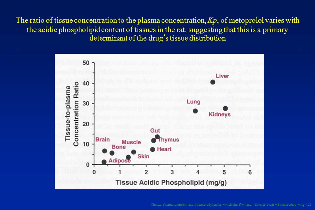The ratio of tissue concentration to the plasma concentration, Kp, of metoprolol varies with the acidic phospholipid content of tissues in the rat, suggesting that this is a primary determinant of the drug's tissue distribution