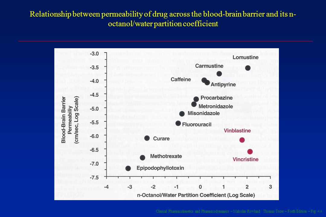 Relationship between permeability of drug across the blood-brain barrier and its n-octanol/water partition coefficient