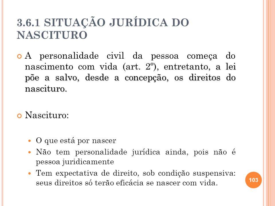 3.6.1 SITUAÇÃO JURÍDICA DO NASCITURO