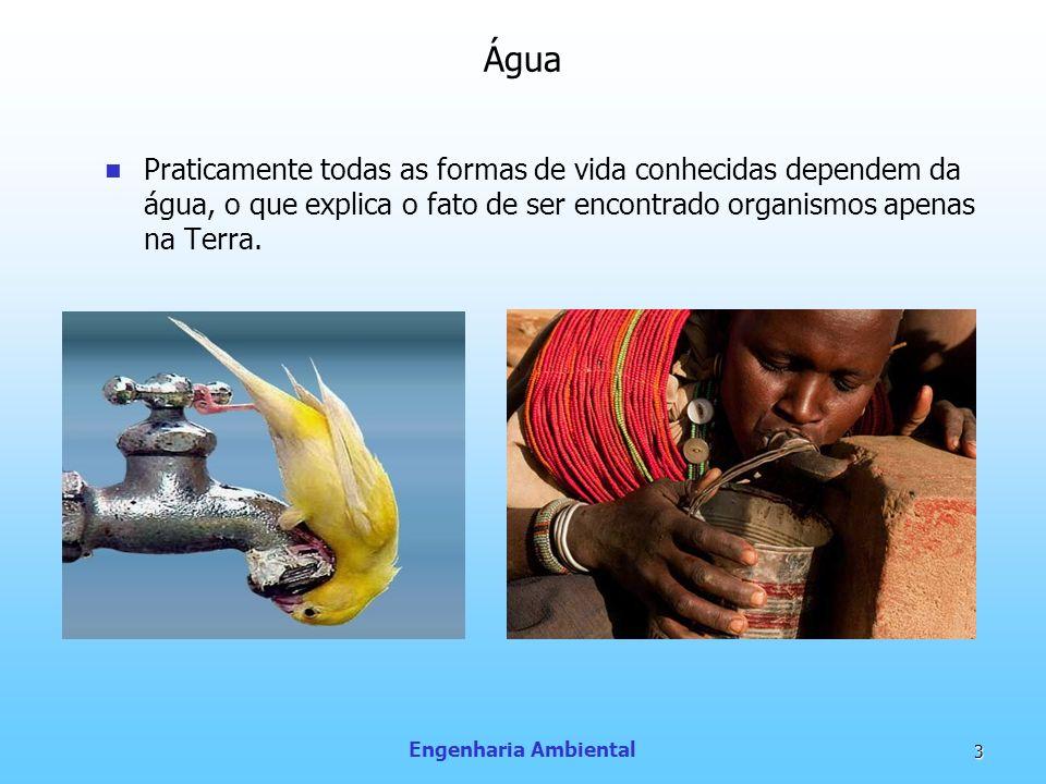 Água Praticamente todas as formas de vida conhecidas dependem da água, o que explica o fato de ser encontrado organismos apenas na Terra.
