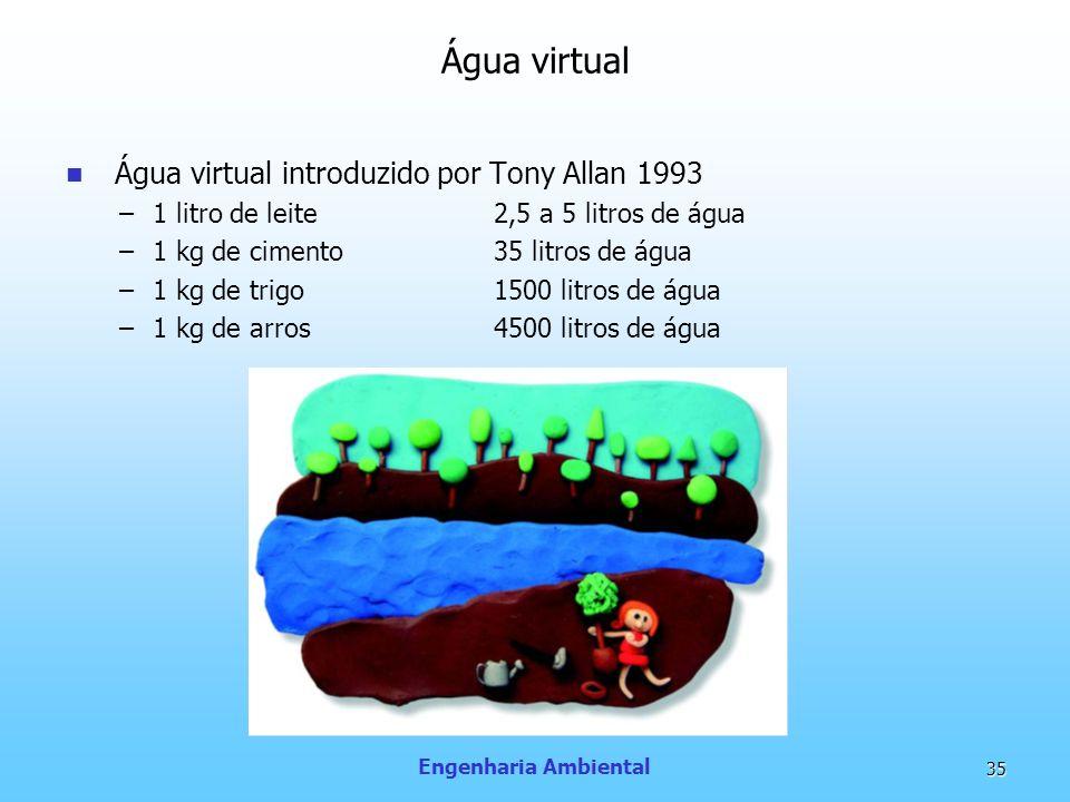 Água virtual Água virtual introduzido por Tony Allan 1993