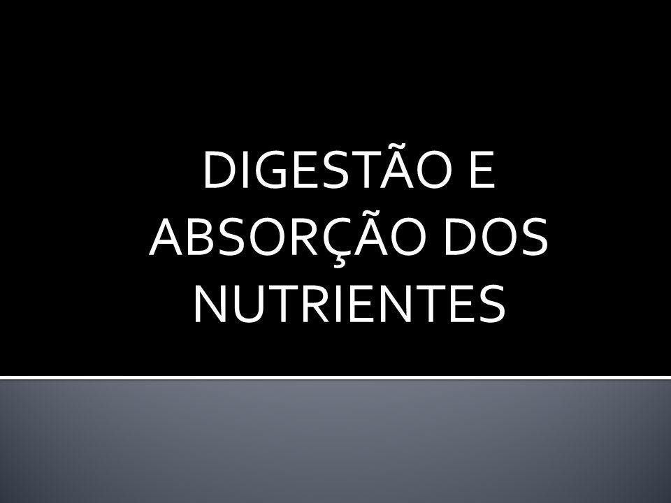 DIGESTÃO E ABSORÇÃO DOS NUTRIENTES