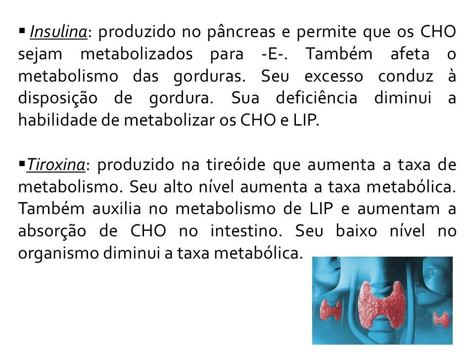 Insulina: produzido no pâncreas e permite que os CHO sejam metabolizados para -E-. Também afeta o metabolismo das gorduras. Seu excesso conduz à disposição de gordura. Sua deficiência diminui a habilidade de metabolizar os CHO e LIP.