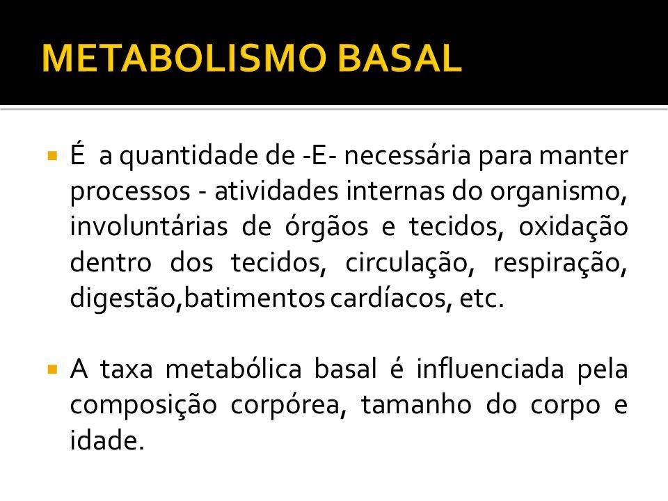 METABOLISMO BASAL