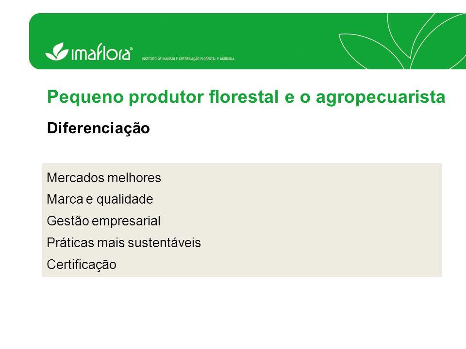 Pequeno produtor florestal e o agropecuarista