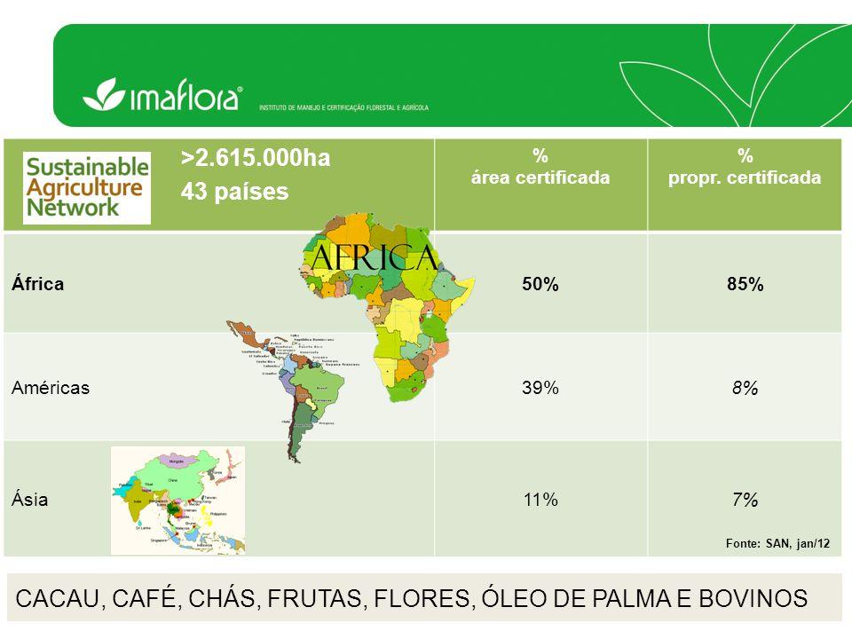 CACAU, CAFÉ, CHÁS, FRUTAS, FLORES, ÓLEO DE PALMA E BOVINOS