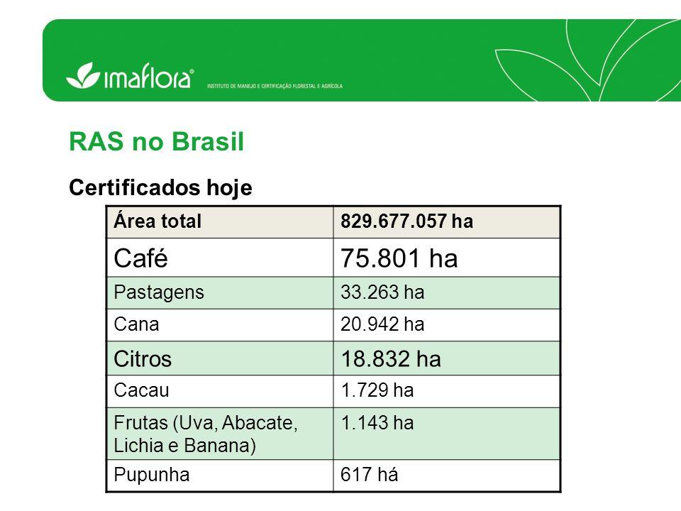 RAS no Brasil Café 75.801 ha Certificados hoje Citros 18.832 ha
