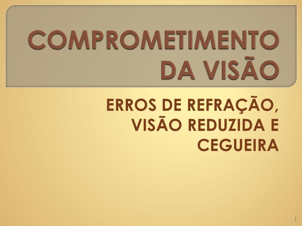 COMPROMETIMENTO DA VISÃO