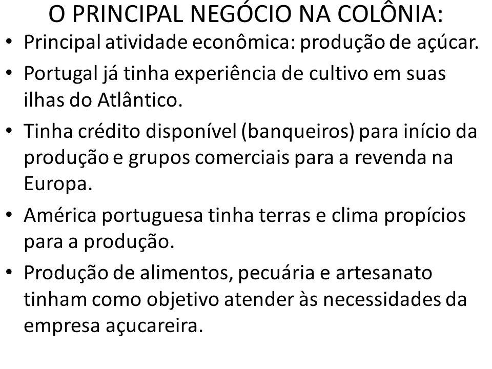 O PRINCIPAL NEGÓCIO NA COLÔNIA: