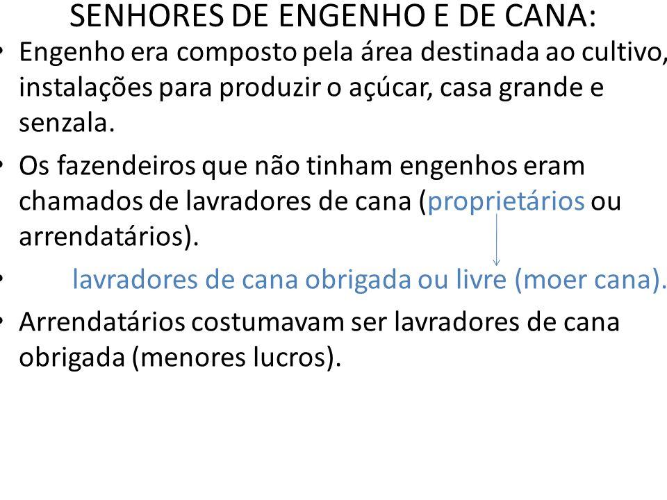 SENHORES DE ENGENHO E DE CANA: